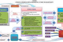 Схема отбора кандидатов на военную службу по контракту
